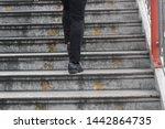 bangkok thailand july 4 2019... | Shutterstock . vector #1442864735
