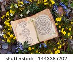 Stock photo open book with wiccan festivals chart among spring flowers wicca esoteric divination and occult 1443385202