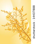 branch in the sunlight | Shutterstock .eps vector #14437888