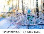 Impressionistic Cherry Branch...