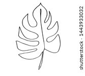 contour line drawing leaf of... | Shutterstock .eps vector #1443933032