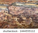 natural old wood background... | Shutterstock . vector #1444555112