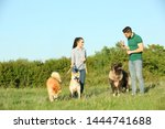 Stock photo young couple walking their dogs in park 1444741688