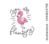 you are flamazing inspirational ... | Shutterstock .eps vector #1444814798