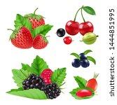 realistic garden and wild... | Shutterstock .eps vector #1444851995
