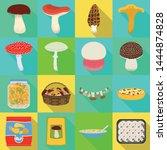 vector design of raw and summer ...   Shutterstock .eps vector #1444874828