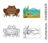 vector illustration of wildlife ... | Shutterstock .eps vector #1444881635