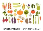 collection of colorful hand... | Shutterstock . vector #1445043512