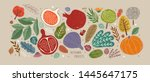 vector illustrations of autumn... | Shutterstock .eps vector #1445647175