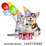 Stock photo funny puppy and kitten in party hats holds balloons with birthday cake with many burning candles 1445750888