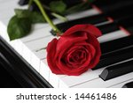 Red Rose On The Piano Keys