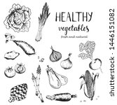collection of hand drawn rough... | Shutterstock .eps vector #1446151082