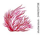 Red Seaweed  Kelp Painting In...