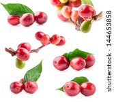 collection of red coffee beans... | Shutterstock . vector #144653858
