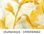 Yellow Beautiful Seaweed On Th...