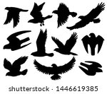 Eagle, falcon and hawk black silhouettes with flying and hunting birds of prey. Heraldic animals with spread wings and attacking claws, american patriotic symbols, falconry emblems