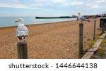 Hastings East Sussex Uk 07 05...
