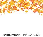 oak  maple  wild ash rowan... | Shutterstock .eps vector #1446648668