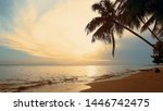 Palms Over Sundown Sea Fond....