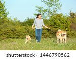 Stock photo young woman walking her adorable akita inu dogs in park 1446790562
