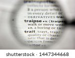 Small photo of The word or phrase Traipse in a dictionary