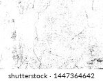 vector grunge texture  a... | Shutterstock .eps vector #1447364642