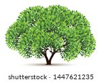 tree vector icon. logo design... | Shutterstock .eps vector #1447621235