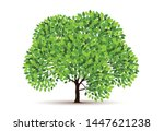 tree vector icon. logo design... | Shutterstock .eps vector #1447621238
