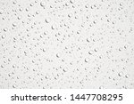 water droplets on white... | Shutterstock . vector #1447708295