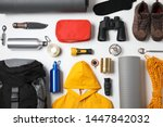 flat lay composition with... | Shutterstock . vector #1447842032