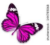 Stock photo pink butterfly isolated on white background 144785068