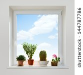 House Plants On The Windowsill...
