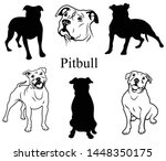 pitbull set. collection of...