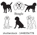 Stock vector beagle set collection of pedigree dogs black white illustration of a beagle dog vector drawing 1448356778