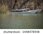 Sailboat Hidden In A Swampy...