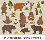 All Bear Species In One Set....