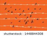 Birds Flying Over Broken Barbed ...