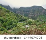 The green and wild high altitude in the north of the Canary Island Tenerife, over Los Realejos. Acacia forests and a massive rocky mountain in the background, over which the Passat blows .