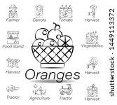 oranges hand draw icon. element ...