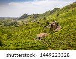 Picturesque Hills With...
