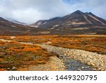 Autumn landscape. Beautiful arctic nature. A small river among the autumn tundra in a mountain valley. Travel to the extreme north. Mountain hikes and adventures. Chukotka, Siberia, Far East of Russia