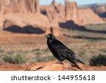 Raven In Beautiful Scene From...