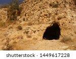 Animal Den Hole Lair Burrow In...