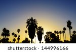 Palm Trees Silhouetted At...