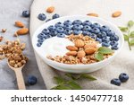 yoghurt with blueberry  granola ... | Shutterstock . vector #1450477718