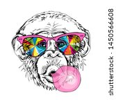 Portrait Of A Funny Monkey In A ...