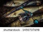fishing background. trophy... | Shutterstock . vector #1450737698