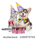 Stock photo kitten and corgi puppy in party hats with gift box and birthday cake with many burning candles 1450975745
