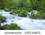 stream in green forest | Shutterstock . vector #145114822