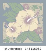 hibiscus natural colors... | Shutterstock .eps vector #145116052